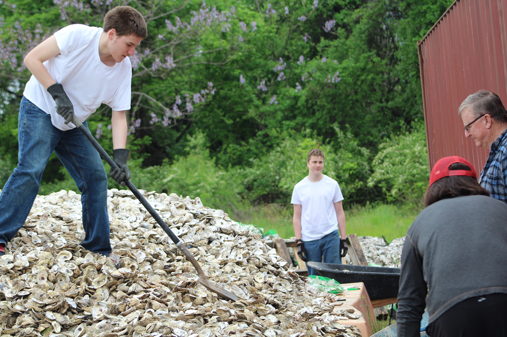 Oyster Shell Bagging With Partnership For The Delaware Estuary