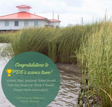 Photo of Winning Shorelines!