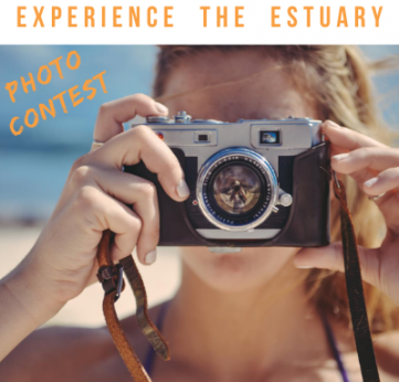 Photo of Experience the Estuary – Photo Contest