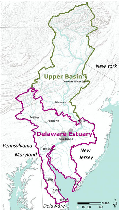 Where is the Delaware Estuary?