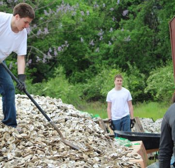 Photo of Volunteer to Bag Oyster Shells
